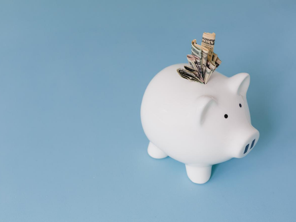 Web Design Company in Seattle Cost How Much Money Piggy Bank